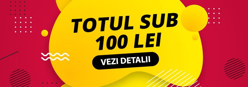 produse-sub-100
