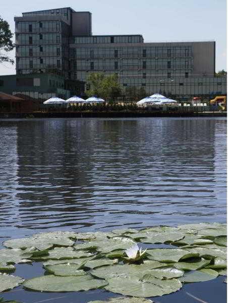 cazare la Mirage Snagov Hotel & Resort