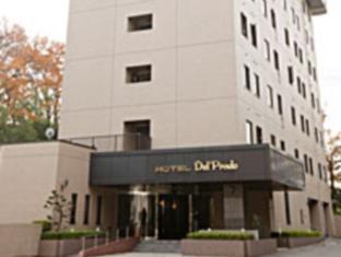 cazare la Hotel Del Prado