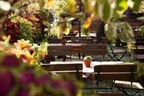 cazare la Historisches Hotel Weinrestaurant Zum Grunen Kranz