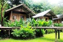 cazare la Khao Sok Cabana Resort