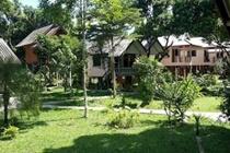 cazare la Khao Sok Jungle Huts