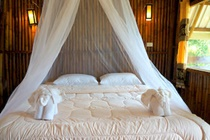 cazare la Khao Sok Jungle Resort