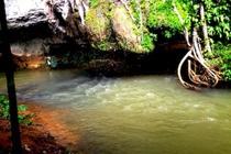 cazare la Khao Sok Silver Cliff Resort