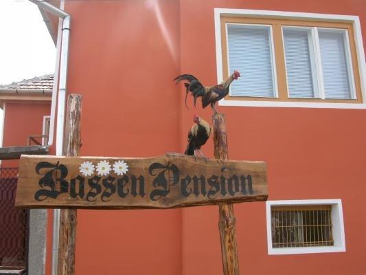 cazare la Bassen Pension