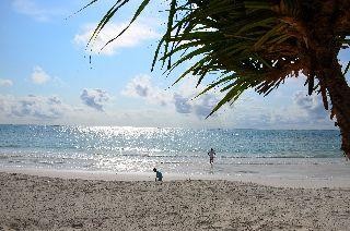 cazare la Indigo Beach Zanzibar Hotel
