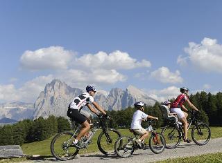 cazare la Albion Mountain Spa Resort Dolomites