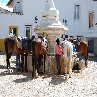 cazare la Hotel Rural Quinta De Santo Antonio