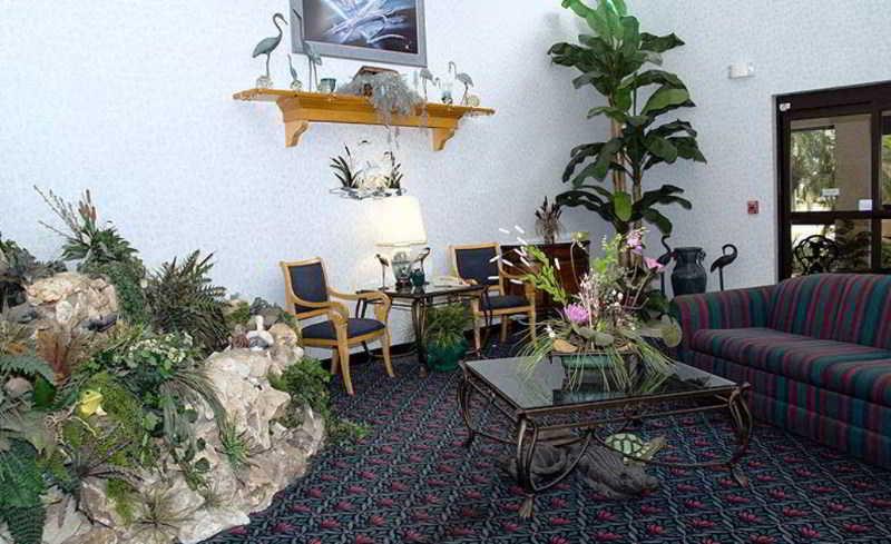 cazare la Comfort Suites Tampa - Brandon