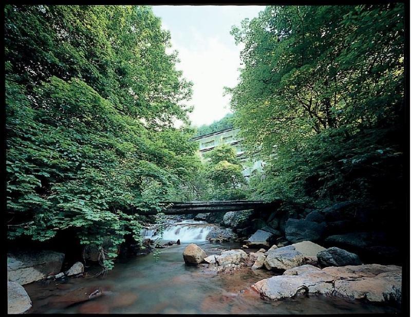 cazare la Yokoya Onsen Ryokan
