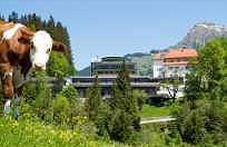 cazare la Hotel Schloss Lebenberg