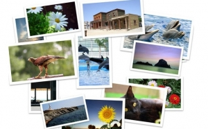 Da viata amintirilor tale! Printare 50 de fotografii pe hartie foto profesionala la doar 32 RON in loc de 80 RON !