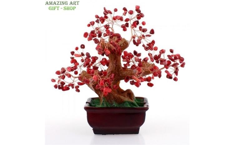 Copac FengShui coral