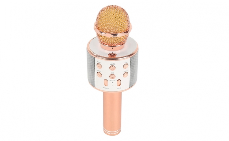 Microfon karaoke fara fir