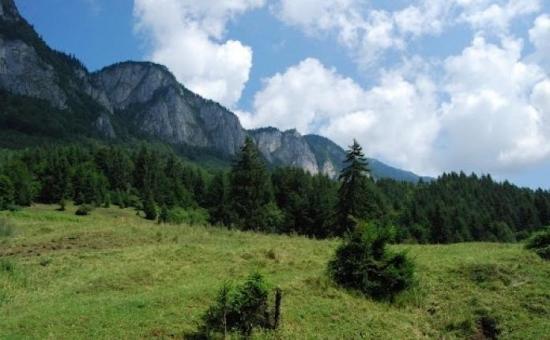 Cazare 5 zile/ 2 pers in Valea Prahovei