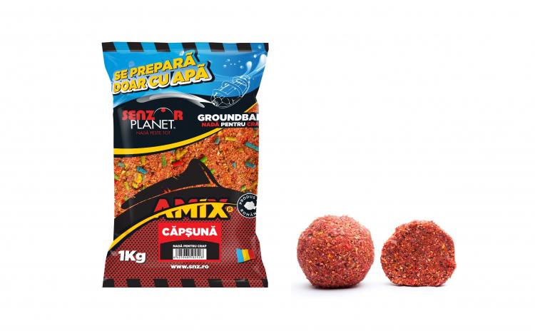 Amix capsuna 1 KG