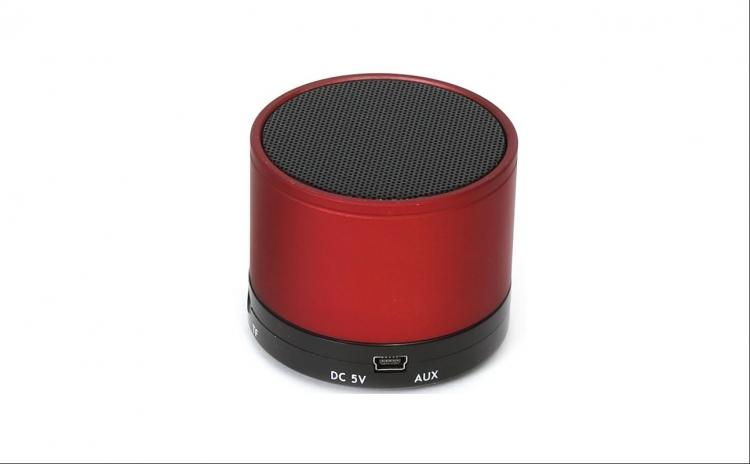 Boxa portabila OMEGA cu Microfon