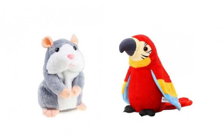 Pachet Hamster + Papagal vorbitori