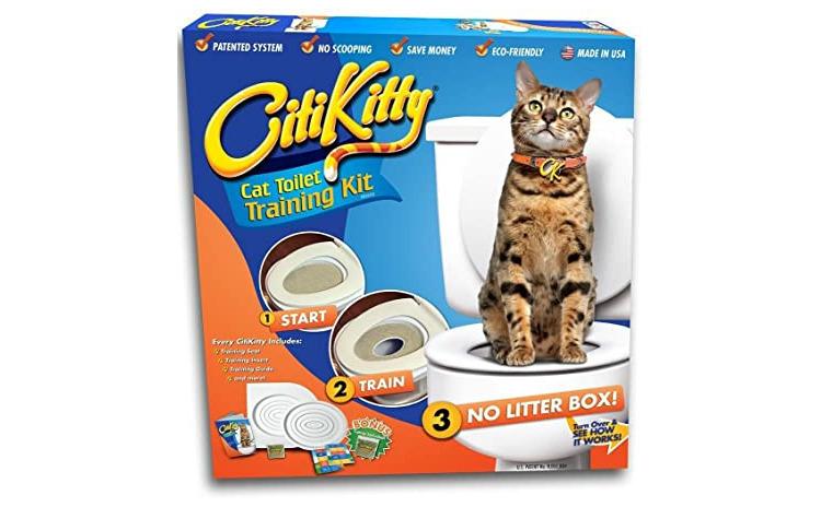 Citi Kitty - kit pentru educarea pisicil