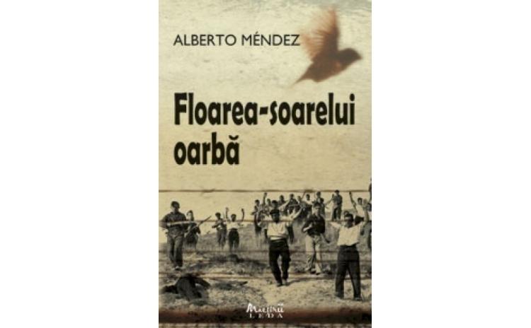 Floarea  Soarelui Oarba , autor Alberto M