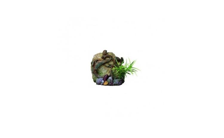 Decor stanca cu sarpe si planta