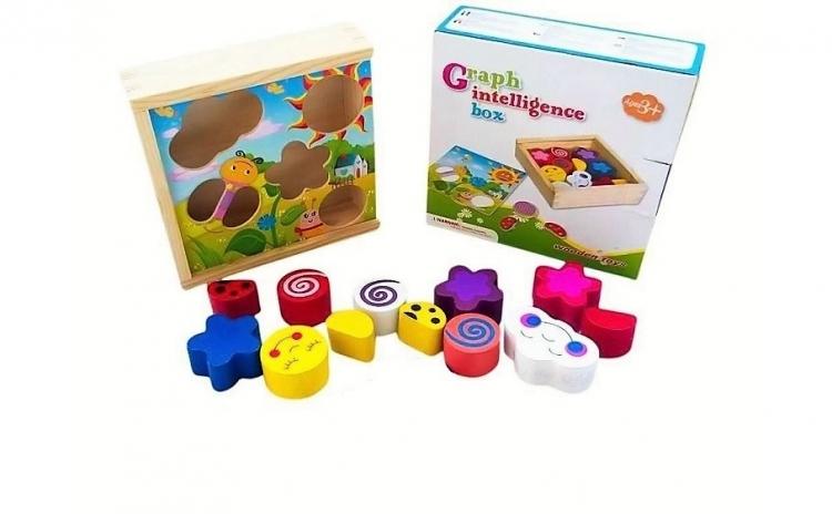 Jucarie Montessori Cutia Inteligentei