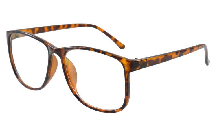 Ochelari cu lentile transparente