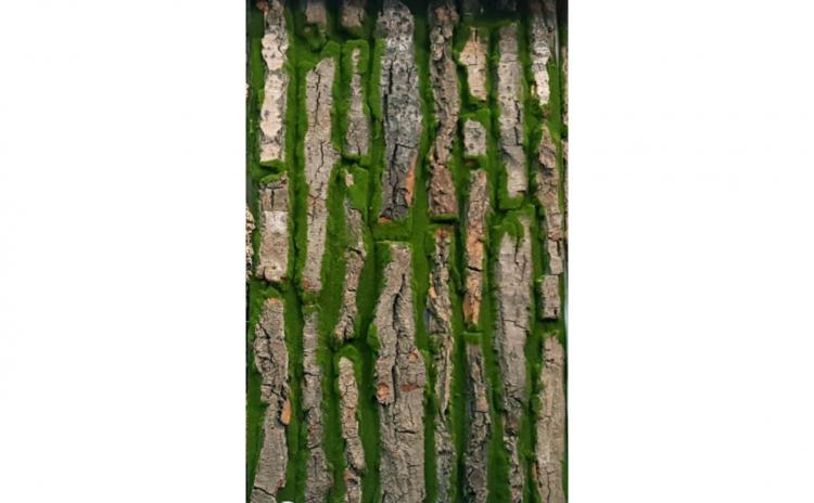 Placa muschi artificial, 50 x 100 cm