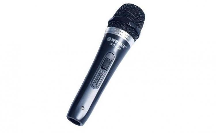 Microfon dinamic profesional cu fir