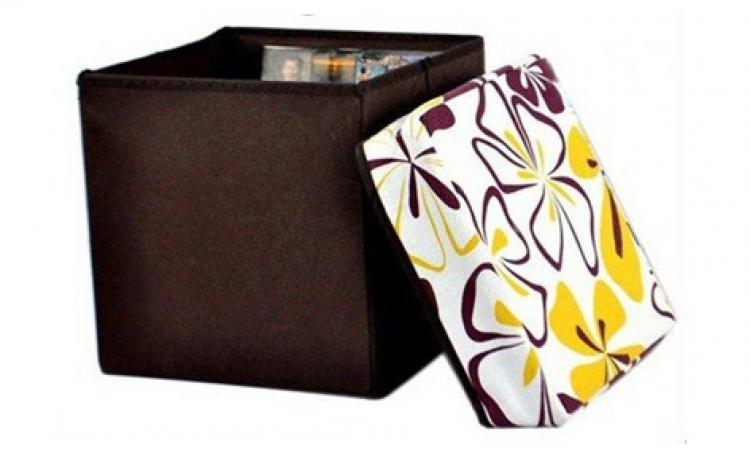 Scaun-cutie Pliabila Pentru Depozitare  La 35 Lei In Loc De 89 Lei