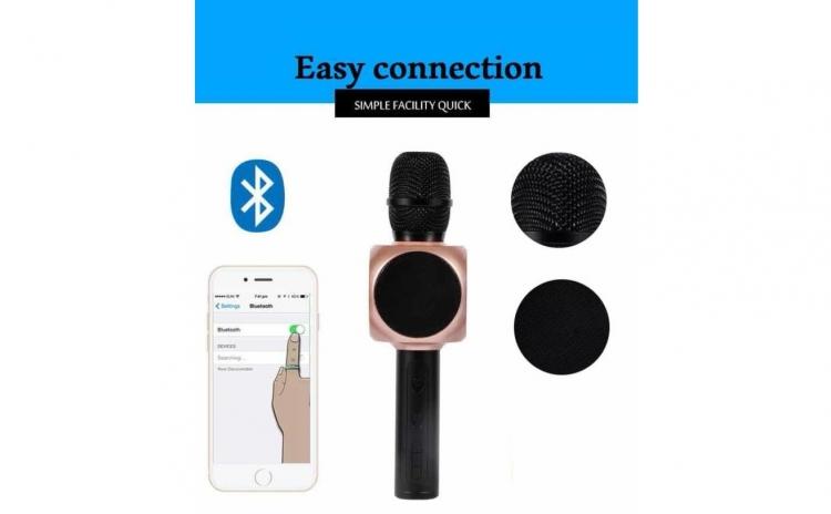 Microfon Wireless portabil - cu boxa