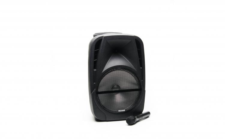 Freeman Karaoke 1001