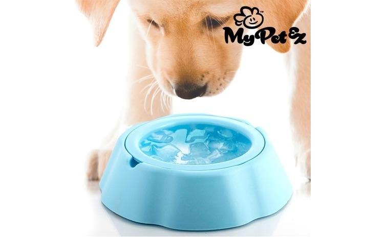 Bol de apa pentru animale de companie My pet frosty bowl