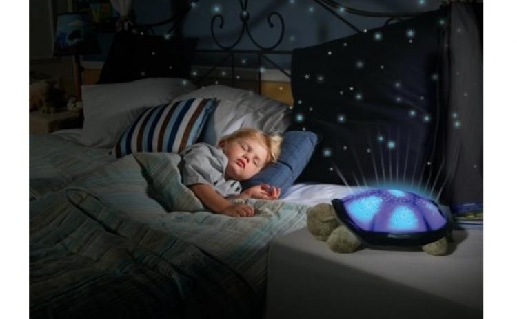 Lampa veghe - broscuta cu proiector