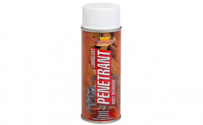 Spray Profesional CHAMPION DEGRIPANT