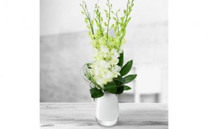 Buchet de 5 orhidee dendrobium albe
