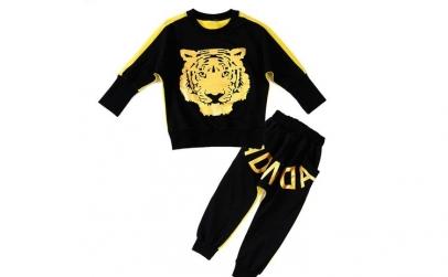 Trening Street Dance Tiger