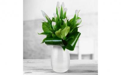 Buchet de 11 irisi albi