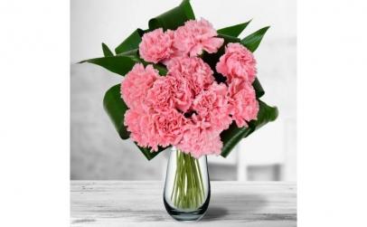 Buchet de 11 garoafe roz