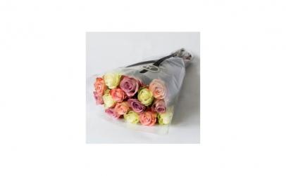 Trandafiri pastel S