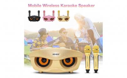 Kit pentru karaoke cu microfon stereo