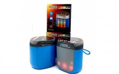 Boxa Bluetooth Portabila - WSTER