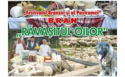 Festivalul Ravasitul Oilor