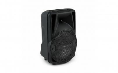 Boxa Activa Portabila cu microfon
