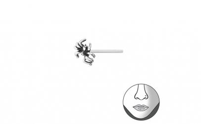 Piercing  nas din Argint, Paianjen