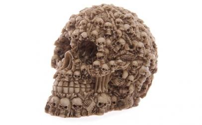 Craniu din rasina decorat cu multiple