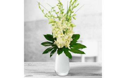 Buchet de 7 orhidee dendrobium albe