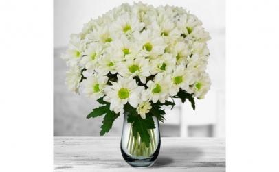 Buchet de 11 crizanteme albe