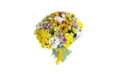 Buchet de 35 crizanteme multicolore