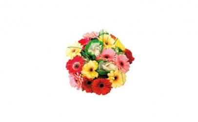 Buchet Floare de vacanta